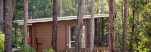 Cabin - private, self contained, bushland