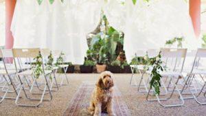 Boutique Events & Weddings